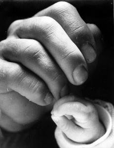 PikiWiki_Israel_12716_Hands_image