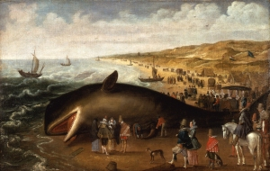 The-whale-beached-1617