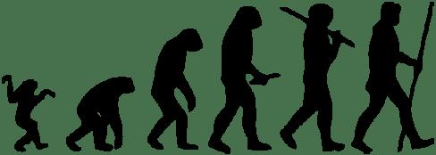 Human evolution scheme